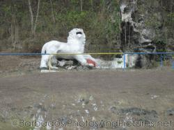 White Lion statue in Barbados.jpg
