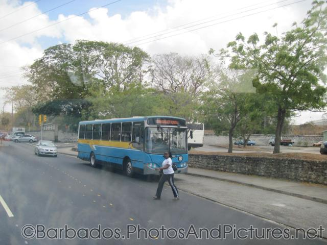 Blue bus going to Bridgetown Barbados.jpg