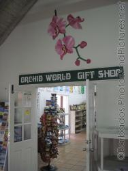 Orchid World Gift Shop at Orchid World in Barbados.jpg