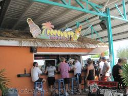 Coconuts Bar & Grill at Bridgetown Cruise Terminal in Barbados.jpg