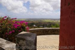 Landing area with pink flowers and nice view at Gun Hill Signal Station in Barbados.jpg