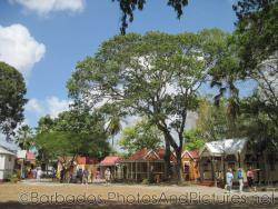 Cottages and large trees at Tyrol Cot in Barbados.jpg