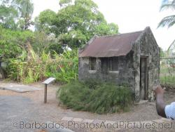 The Outhouse in Tyrol Cot in Barbados.jpg